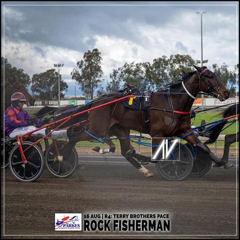 ROCK FISHERMAN, driven by Doug Hewitt, wins at Parkes Trots last 16 August 2020