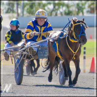 Retiring NSW Mini Trot Driver 2020   Isabella Cassar