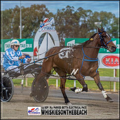 WHISKIESONTHEBEACH, driven by Gregory Rue, wins at Parkes Harness