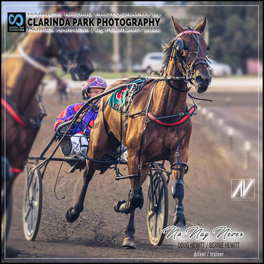 05 February 2020 - Parkes Trots - NO NAY NEVER at Parkes Harness Race Meeting