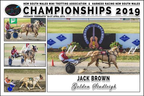 BROWN Jack - Golden Studleigh - 000