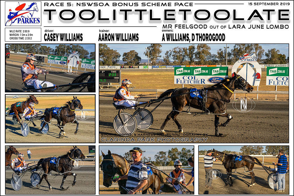 TOOLITTLETOOLATE Wins at Parkes Harness Racing Club. Trainer: Aaron Williams. Driver: Casey Williams. Owner: A Williams, D Thorogood