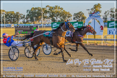 Race 3 - TAB com au Elvis Championship Heat 3 - 02 - Facebook Uploads - LETS POP THE BUBBLES - Amanda Turnbull - 006
