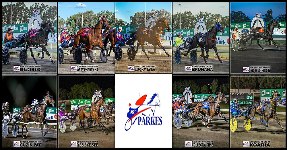 PARKES HARNESS - ARTY PHARTY NZ - HE SAID SHE SAID - LUCKY LYLA - BRUHAHA - SHES THE OTHER ONE - CUZIN PAT - YES EYE SEE - COLLECT A DIME - KOARIA