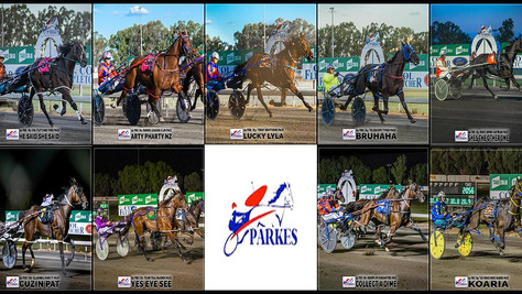 Congratulations to PARKES HARNESS Racing Club Race Meeting Winners - 21 February 2021