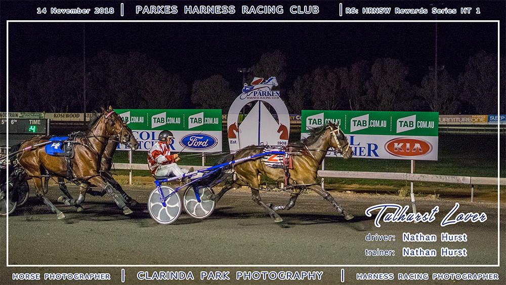 Parkes Harness | 14 November 2018 | Race 6 HRNSW Rewards Series Heat 1 winner | Tulhurst Lover | Harness Racing Photos | Horse Photographer | Clarinda Park Photography