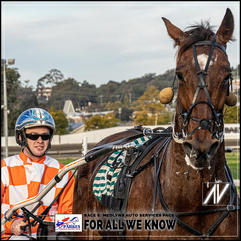 FOR ALL WE KNOW driven by Tom Pay at the Parkes Trots
