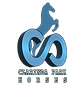 Clarinda Park Horses - Yearling Sales, Horse Breeding, AI, Standardbred Hoses, Harness Racing, Harness Racing Australia, Harness Racing NSW, HRNSW