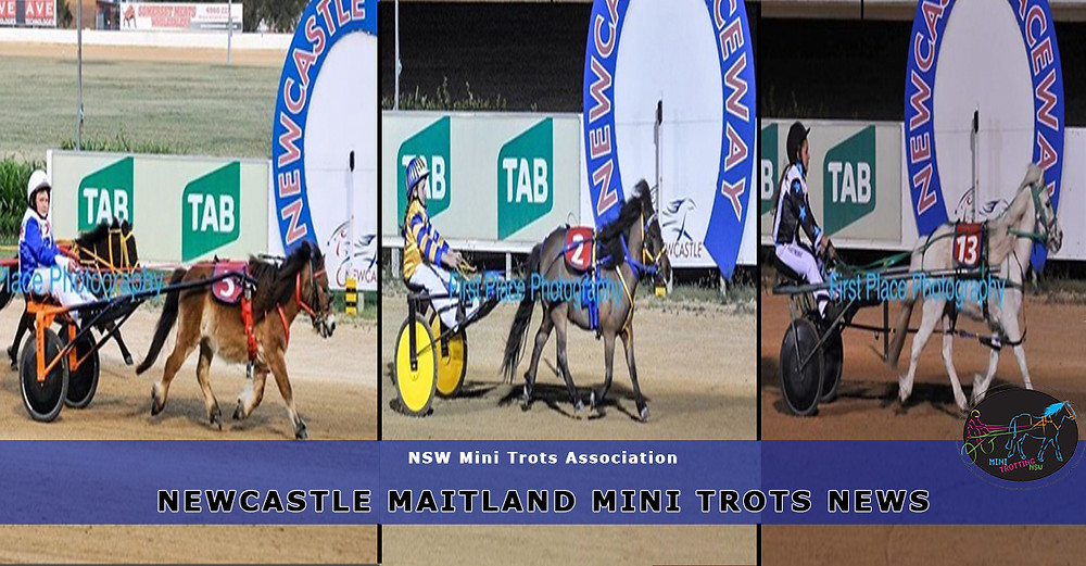 Newcastle Maitland Mini Trots updates