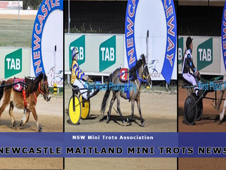 Newcastle Maitland Mini Trots News