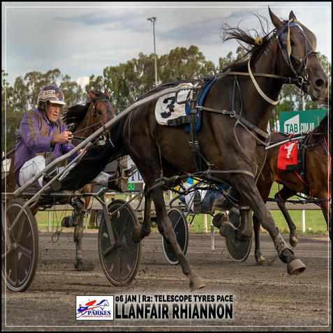LLANFAIR RHIANNON, driven by Kelvin Winnell, wins at Parkes Trots