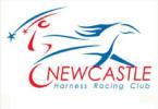 Newcastle Harness Racing Club  | NSW Mini Trots
