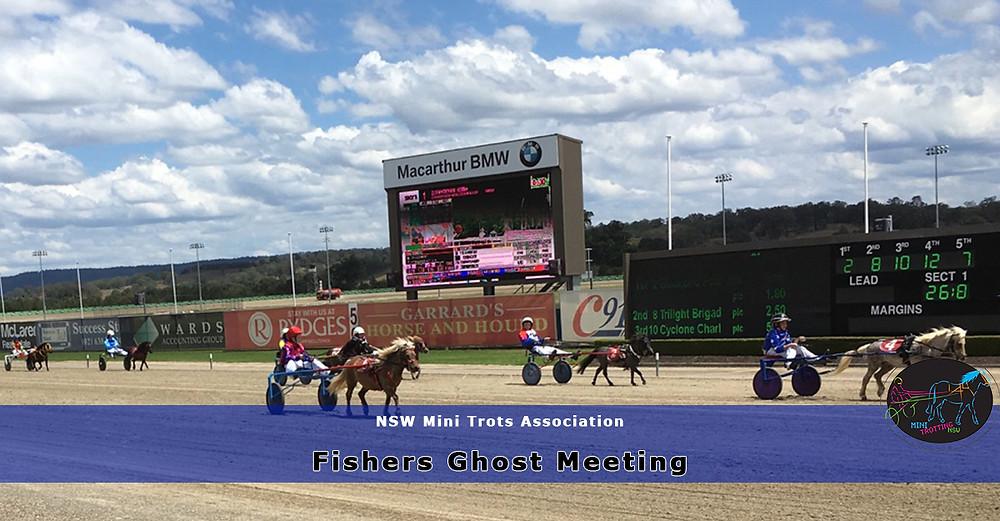 NSW Mini Trots Association Fishers Ghost Meeting