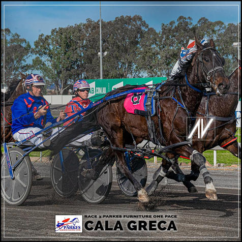 CALA GREACA driven by Jason Turnbull  at the Parkes Trots