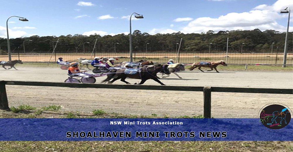 Shoal Haven Mini Trots. New South Wales Mini Trots.
