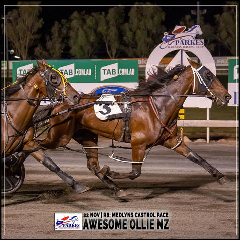 AWESOME OLLIE NZ, driven by Nathan Townsend, wins at Parkes Harness