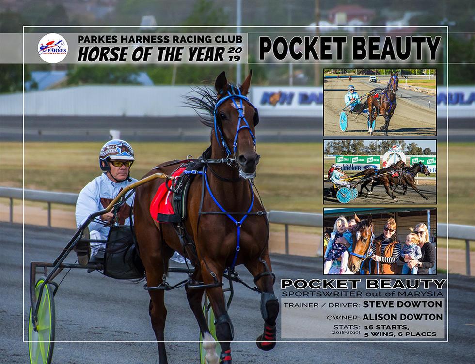 2019 PARKES Horse Of The Year - POCKET BEAUTY