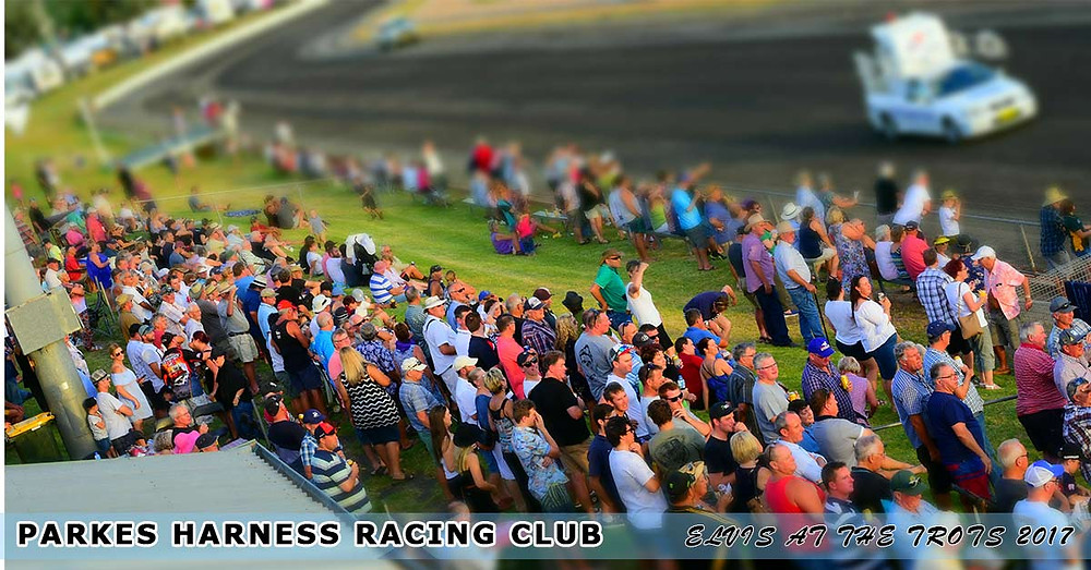 Parkes Harness Racing Club | Elvis At The Trots 2017
