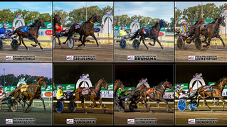 Congratulations to PARKES HARNESS Racing Club Race Meeting Winners - 28 February 2021