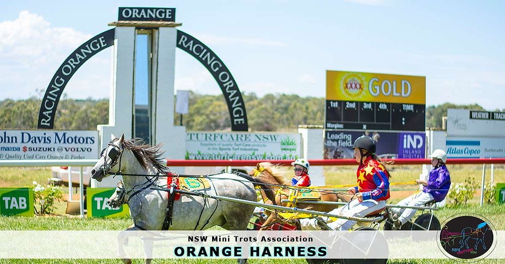 NSW Mini Trots racing at Orange Harness 2017