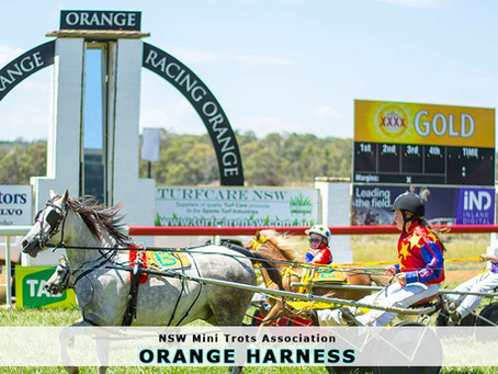 NSW Mini Trots Races at Orange Harness