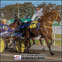 JENDEN STRIKE, driven by Anthony Frisby, wins at Parkes Harness
