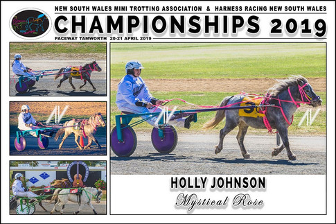 JOHNSON Holly - Mystical Rose - 000