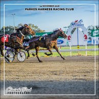 14 NOVEMBER 2018 - Parkes Harness