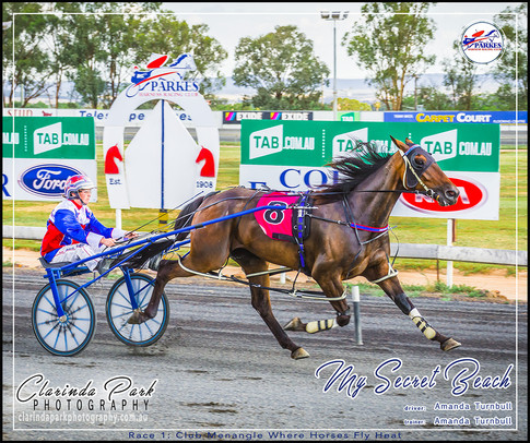 R1 - CLUB MENANGLE WHERE HORSES FLY HEAT - My Secret Beach - Amanda Turnbull - 02 - 004