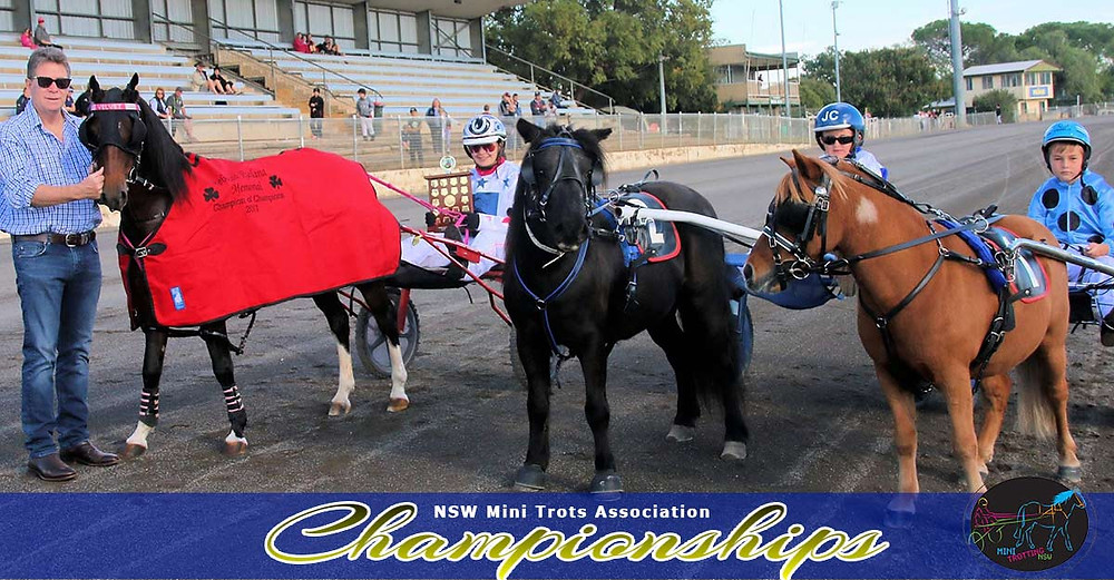 HRNSW CEO John Dumesny with Champion of Champion runners Velvet Little Star Bobby Bouche and Chesters Lad. NSW Mini Trots Championships