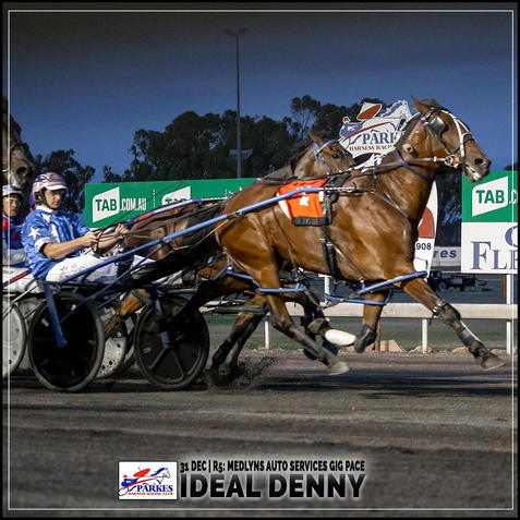 IDEAL DENNY, driven by Mat Rue, wins at Parkes Trots
