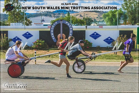 20190421 NSW Mini Trots Championships - Day 2 - Team Relay - 115
