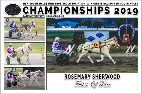 SHERWOOD Rosemary - Twist Of Fate - 000