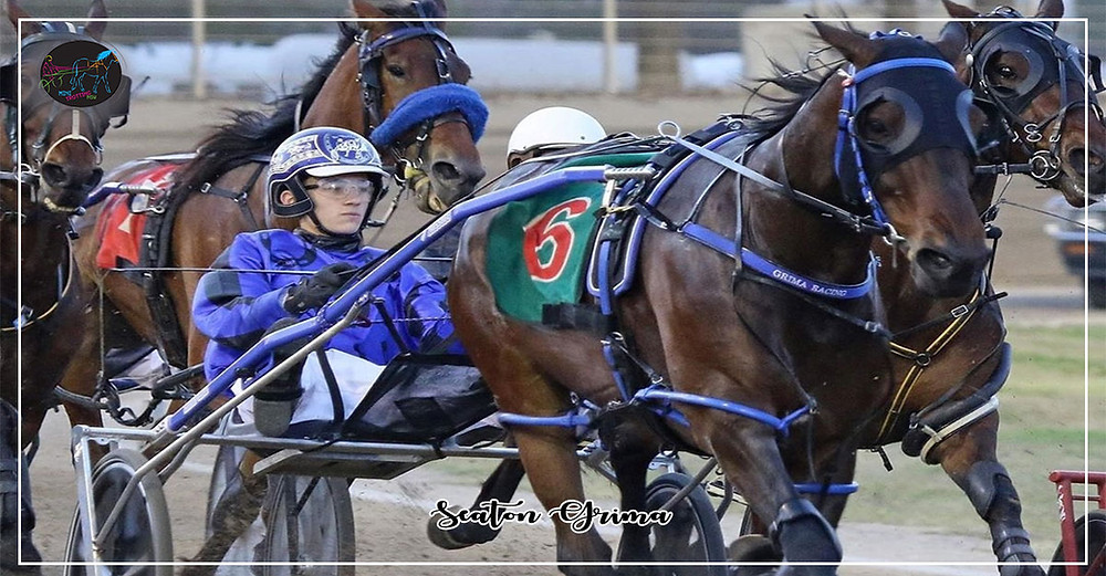 Seaton Grima First Win After Graduating Mini Trots