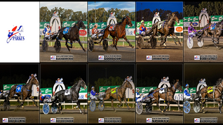 Congratulations to PARKES HARNESS Racing Club Race Meeting Winners - 28 March 2021