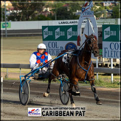CARIBBEAN PAT, driven by Malcolm Hutchings, wins at Parkes Trots