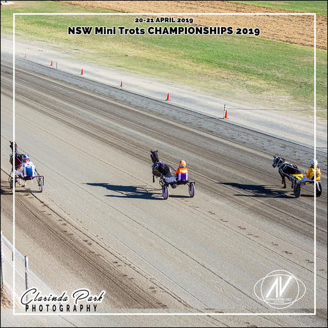 New South Wales Mini Trots Association Championships 2019 - Champion of Champions Race