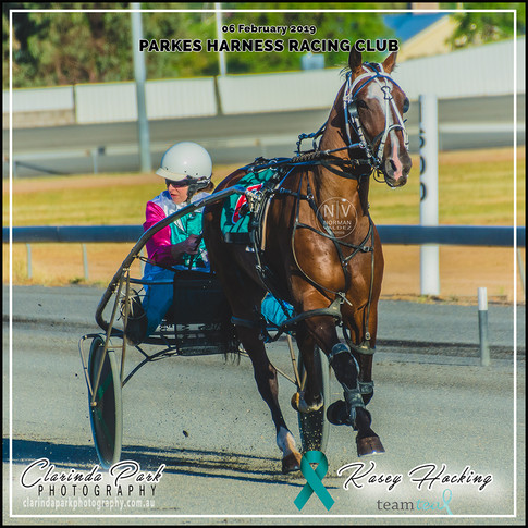 Team Teal at HRNSW: Kasey Hocking