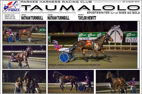 TAUMALOLO wins at Parkes Harness Trots
