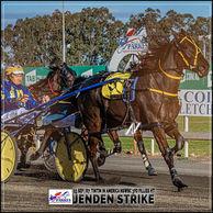 Parkes Harness Race Winners: JENDEN STRIKE driven by Anthony Frisby