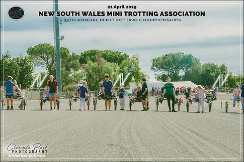 20190421 NSW Mini Trots Championships - Day 2 - Team Relay - 102