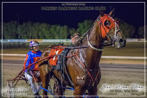R5 COL FLETCHER FORD Pace - JUST WON MORE - Nathan Turnbull - 104