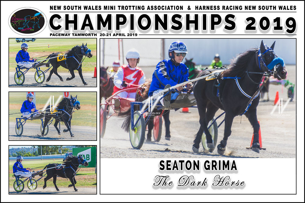 Seaton Grima driving The Dark Horse during the New South Wales Mini Trots Championships 2019 held at Paceway Tamworth