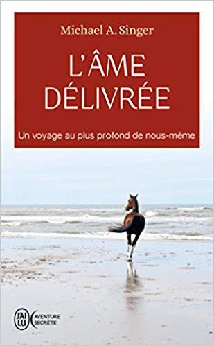 """Michael A. Singer, """"L'âme délivrée"""""""