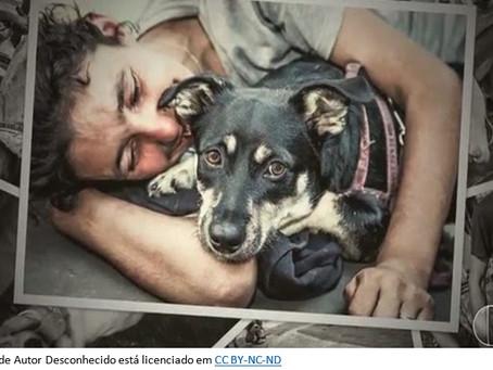 A humanidade dos animais não humanos