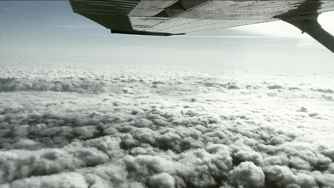 Cessna 174