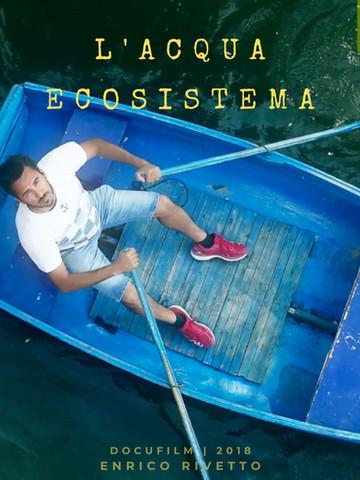 L'ACQUA   ECOSISTEMA