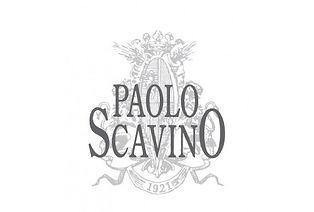 paolo-scavino_Pagina_1.jpg