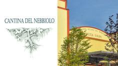 CANTINA DEL NEBBIOLO | Vezza d'Alba