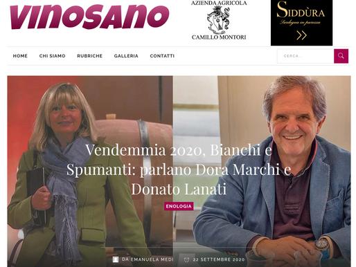 Vendemmia 2020, Bianchi e Spumanti.